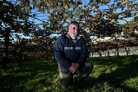 Te Puke kiwifruit grower Rob Thode has questioned whether the new G3 gold kiwifruit variety will prove to be a blessing or a curse for the industry