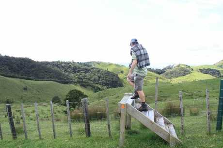A project to create a walkway in the Brynderwyn Ranges, south of Whangarei, will receive funding through the New Zealand Walking Access Commission's Enhanced Access Fund.