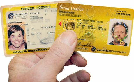 Qld department of transport license renewal