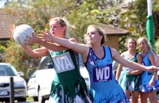 Netball games at Arkinstall Park, in Tweed Heads South, are about to give up a level with upgrade funding meaning Commonwealth Games teams could train there.