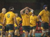 RUGBY fans, get your autograph books ready. The Wallabies will go into camp on the Coast before the Brisbane Test against the British and Irish Lions.