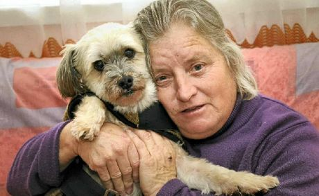 Helen King and her dog Bill were the victims of a savage attack by two staffordshire bull terriers yesterday morning.