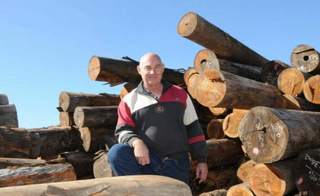 Graeme Robertson, of Robertson Brothers sawmill, is hoping the Newman Government's forestry plan will give his business a brighter future.