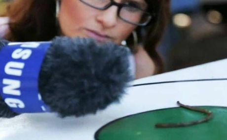Toowoomba blogger Christie McCabes video about the Crows Nest worm races has earned her a trip to the London Olympics.