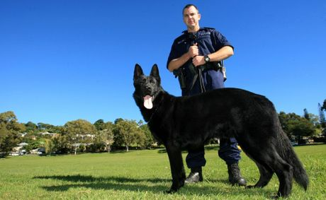 Senior Constable Paul Barrenger with the new Tweed-Byron general duties dog.