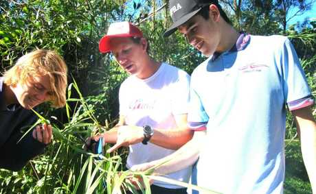 MACS founder Tim Jack Adams with Kingscliff High students Elliot Kahl and Max Tilley. 