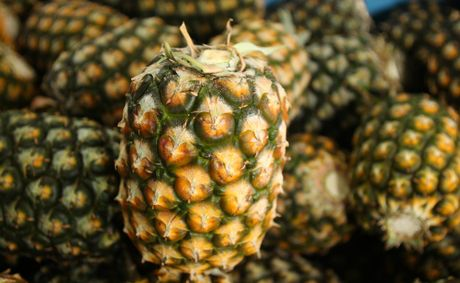 Growcom is concerned about the risk posed to the Australian pineapple industry from Malaysian imports.