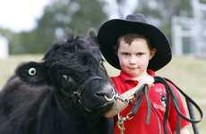 Tahlia Cole, 5, with Rainbow at the Rosewood Show on Saturday, June 24. Photo: Claudia Baxter / The Queensland Times