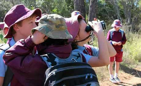 CHECK IT OUT: Warwick Central State School students pass around the binoculars, hoping to spot a bird.