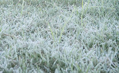 The first frost of the season settles on Gympie's Albert Park. Gympie recorded a minimum of 0.9 degrees.