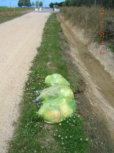 People dumping rubbish illegally are costing the council