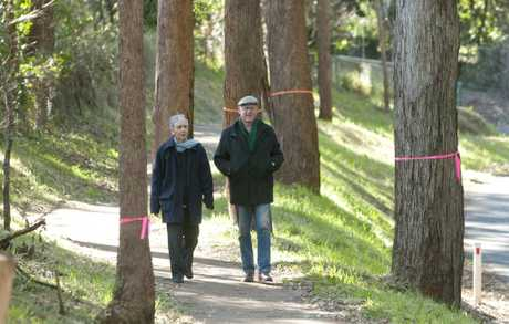 Lynnette and Henk van Kerkwijk&#39;s picturesque walking route will soon lose about 30 long-established ironbark and gum trees.