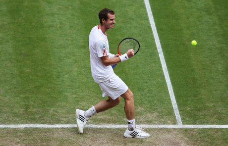 Andy Murray celebrates during his Gentlemen's Singles quarter final match against David Ferrer on day nine of the Wimbledon Lawn Tennis Championships.