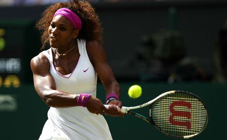 Serena Williams is the overwhelming favourite to win another Wimbledon title when she plays Agnieszka Radwanska in the women's final.