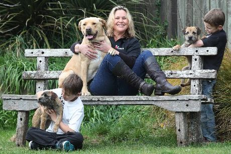 Dog Guru Rotorua trainer Nadine Steele teaches people how to keep their children safe around dogs. She is pictured with her sons Bradley, 10, (far left) with Koda and Jacob, 7, (far right) with Buddy.