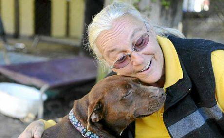 Sally Rogers, of Happy Paws Haven at Eatonsville, with some of the many dogs in her care.