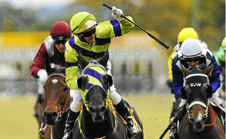 Winner of the 2011 Grafton Cup, No 8, Warrior Within, with jockey Paul Hammersly (purple and green).