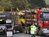 A major Northland road was closed yesterday when two logging trucks, one fully laden, collided.