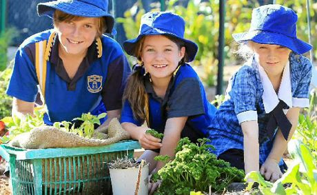 Caloundra State Primary School students (from left) Alex Hiotis, Amy Rosenthal and Abigail Bopf in their school's healthy food garden.