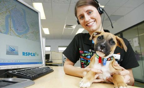 RSPCA customer service representative Fleur Jackson will use new technology called Pet D-Tect to help find missing pets faster.