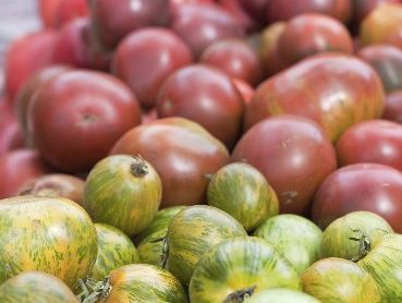 Heirloom tomatoes are packed with flavour