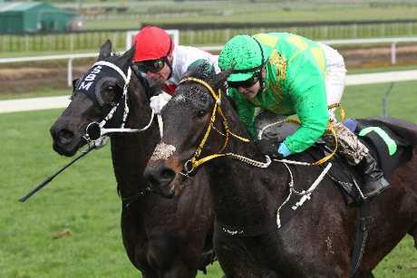 Race 5 Vero Cup won by Patsy O'Reilly ridden by Tasha Collett (in green).