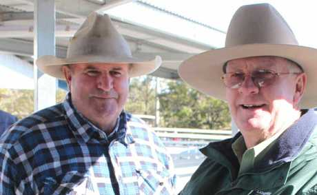CHECKING IT OUT: Roger Wilson, from Rockhampton, and Michael Lynch, from Landmark Rockhampton, at the July 20 sales at CQLX.
