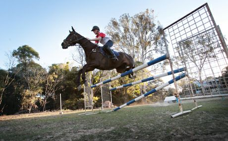 HORSING AROUND: Sebastian Fox, 15 will be taking part in the show jumping at the Ekka with his horse Strained Lyrics.