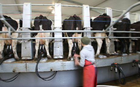 CHANGING INDUSTRY: A report on the dairy industry shows there are many career paths.