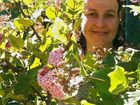 Chelsea van Rijn from Trevallan Lifestyle Centre talks classic plants.