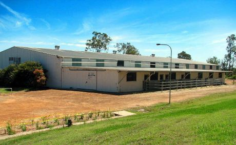 SADDLING UP: Trenayr TAFE Equine Studies Centre will host a training clinic by world-renowned horseman Rodrigo Matos.