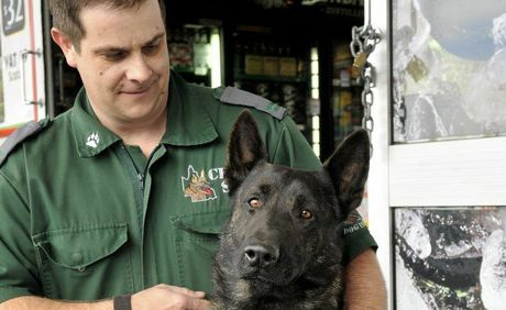 CK9 - SAS security guard Jason McIntosh and Diesel the Dutch Shepherd chased down and disarmed an armed robber at Wyalla Plaza last night. Photo Dave Noonan / The Chronicle