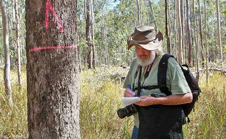 HOW MUCH CAN A KOALA BEAR?: Dailan Pugh records the details of an assessed koala tree.