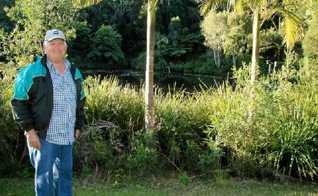 GREEN GUARDIAN: Rex Harris on his property near Bangalow.