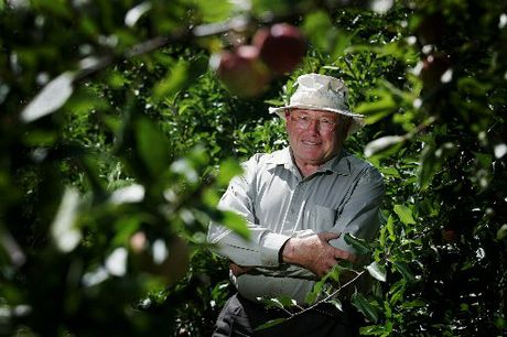John Wilton says a shorter growing time contributed to this year's harvest producing smaller apples.