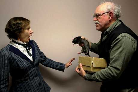 Rat-a- twoey: Mandy Faulkner as Margaret Sullivan and Clive Lamdin as Norbert Briggs get personal with a rat named Noir in a new staging of Dracula.