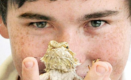 Casino High School student Brandon Gifford, 17, shown with his central bearded dragon Rubin has won the Australian Museum Eureka Prize 2012 University of Sydney Sleek Geeks Science Eureka Prize for the second year in a row.