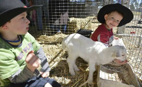 Winston (left) and Darcy Wells from Ipswich made some new friends in the petting zoo at the Jackie Howe Festival of the Golden Shears at Jondaryan Woolshead.