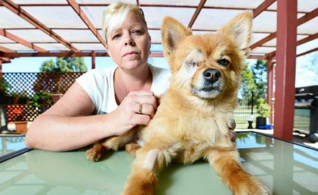 Louise Oakden of Fernvale believes their family pet dog Fritzi was bashed.
