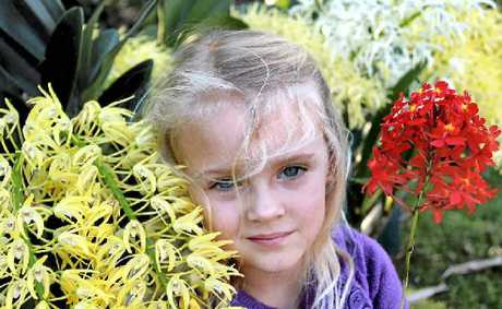BLOOMING LOVELY: Maddison Elle McDougall with some of this year's orchids.
