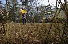 Trent Chapman - walking from Brisbane to Sydney with a Tanaka whipper snipper to raise money for Parkinsons research