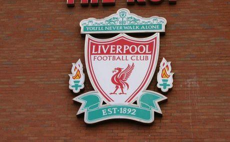 The Hillsborough Independent Panel found that up to 41 Liverpool supporters might have survived if they had received adequate emergency care.