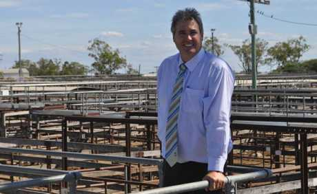 Western Downs Regional Council mayor Ray Brown at the Dalby-Wambo Saleyards.