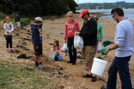 Volunteers get to work cleaning up Te Haumi flats, just south of Paihia. Photo / Catherine Langford