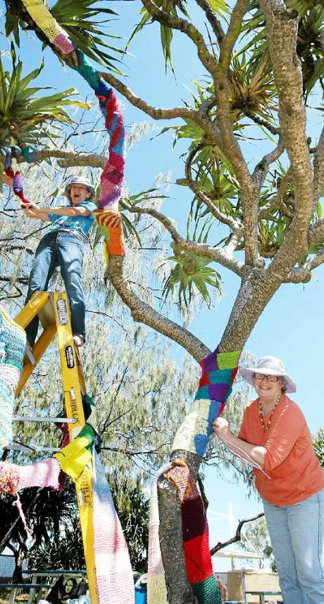 COLOUR INFUSION: Pomona Knitters set up the Yarn Bombing tree for the festival.