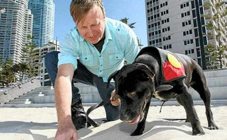 Trainer Gary Jackson and sniffer dog Migaloo in training before the possibility of being put to work in the French battlefields of the First World War.