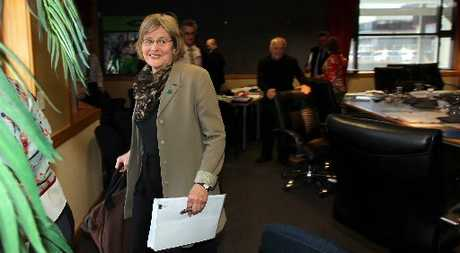 Green Party MP Eugenie Sage asked the Hawke&#39;s Bay Regional Council to take more time to find solutions for the water shortage problems restraining economic growth on farms and land operations around the Ruataniwha Plains. Photo / Duncan Brown