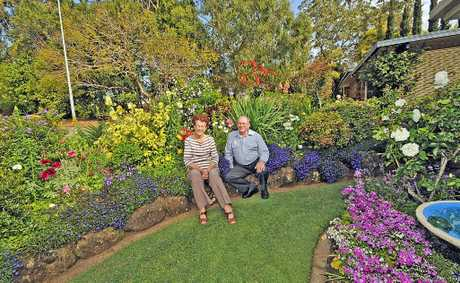 GREEN THUMBS: Fay and Ray Hanlon in their award-winning Jade Ave garden in Goonellabah.