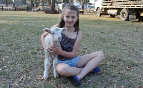 Young Farm Girl Lives Her Dream Warwick Daily News