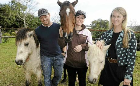 HORSES HELP: Psychologist David Godden, equine specialist Karen Harland and psychologist Dr Victoria Maud with Angel, Rosie and Billy, three of the horses used in the Equine Therapy Program.
